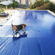 Energy-saving Safety Cover_Dog safety-blue